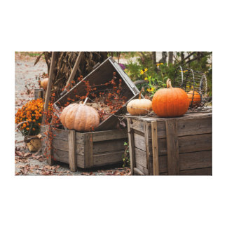 North Carolina, Linville, autumn pumpkins Canvas Print
