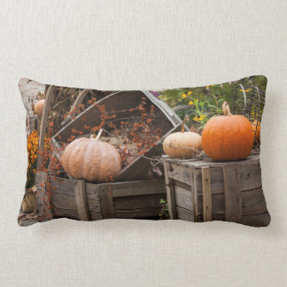 North Carolina, Linville, autumn pumpkins Lumbar Pillow