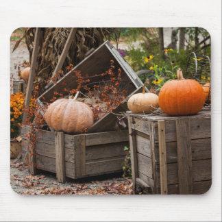 North Carolina, Linville, autumn pumpkins Mouse Mat
