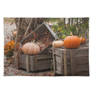 North Carolina, Linville, autumn pumpkins Placemat