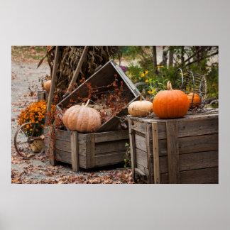 North Carolina, Linville, autumn pumpkins Poster