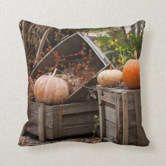 North Carolina, Linville, autumn pumpkins Throw Pillow