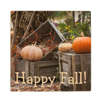 North Carolina, Linville, autumn pumpkins Wood Coaster