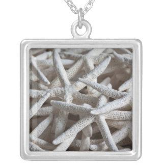 North Carolina, Outer Banks National Seashore 2 Silver Plated Necklace