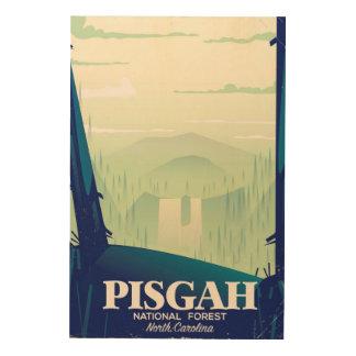 North Carolina Pisgah national park travel poster