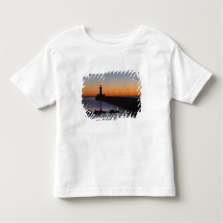North pier Lighthouse in Duluth, Minnesota, Toddler T-Shirt