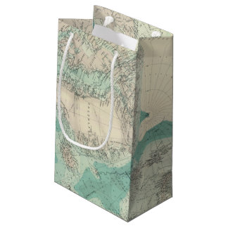 North Polar regions 2 Small Gift Bag