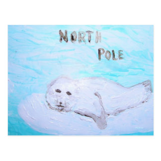 North Pole Harp Seal Postcard