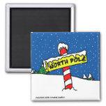 North Pole Magnet