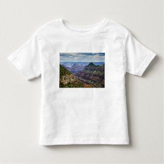North Rim Gran Canyon - Grand Canyon National T Shirts