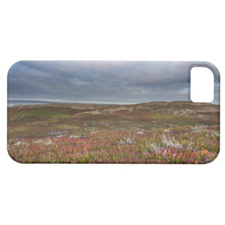 North San Francisco 2 Point Reyes National iPhone 5 Covers