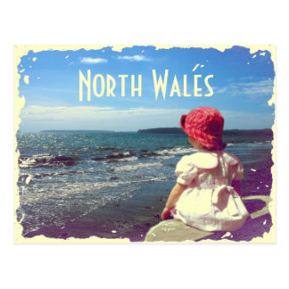 North Wales Vintage Card Postcard