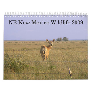 Northeastern New Mexico Wildlife 2009 Calendars