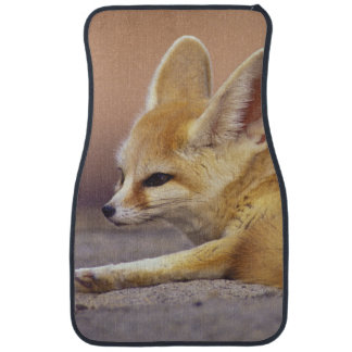 Northern Africa. Fennec Fennecus zerda) Car Mat