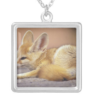 Northern Africa. Fennec Fennecus zerda) Silver Plated Necklace