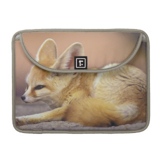 Northern Africa. Fennec Fennecus zerda) Sleeve For MacBook Pro