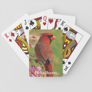 Northern Cardinal 2 Poker Deck