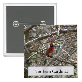 Northern Cardinal 15 Cm Square Badge