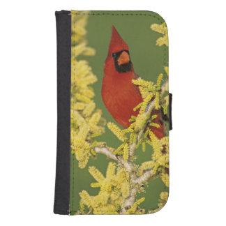 Northern Cardinal, Cardinalis cardinalis,male Samsung S4 Wallet Case
