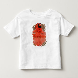 Northern Cardinal Cardinalis cardinalis) male Toddler T-Shirt