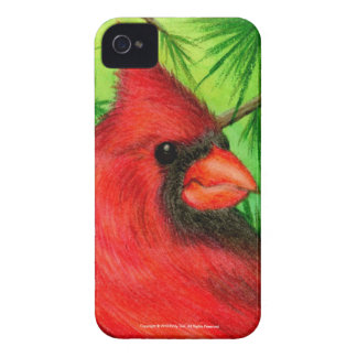 Northern Cardinal Blackberry Bold Covers