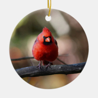 Northern cardinal christmas ornament