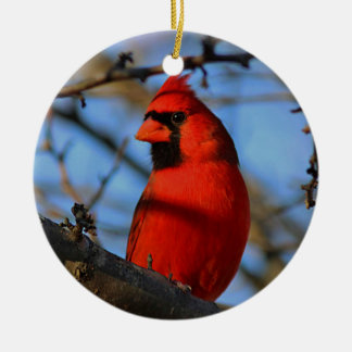 Northern cardinal christmas ornament