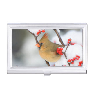 Northern Cardinal female on Common Winterberry Business Card Holder