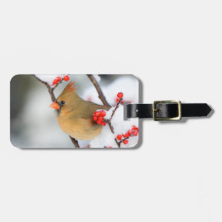 Northern Cardinal female on Common Winterberry Luggage Tag