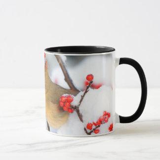 Northern Cardinal female on Common Winterberry Mug