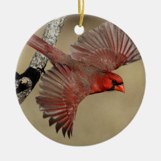 Northern Cardinal In Flight Round Ceramic Decoration