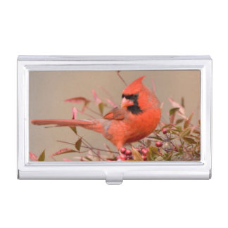 Northern Cardinal in Nandina Heavenly Bamboo Business Card Holder