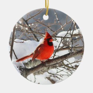 Northern cardinal in the snow christmas ornament