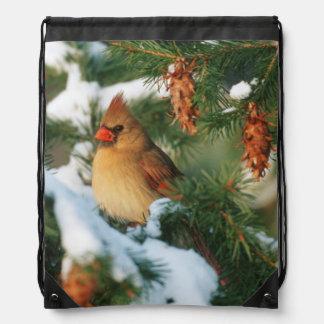 Northern Cardinal in tree, Illinois Drawstring Bag