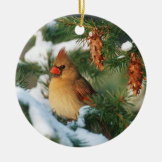 Northern Cardinal in tree, Illinois Round Ceramic Decoration