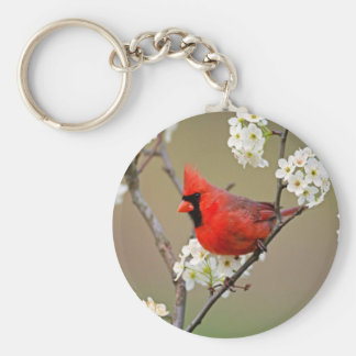 Northern Cardinal Key Ring