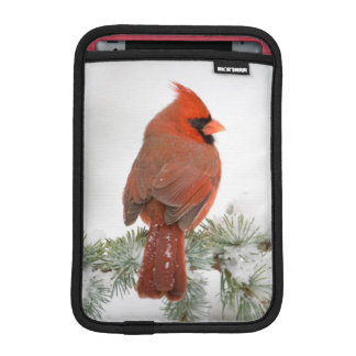 Northern Cardinal male on Blue Atlas Cedar iPad Mini Sleeve