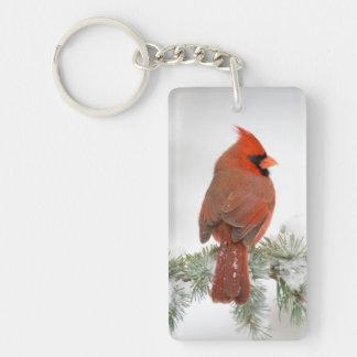 Northern Cardinal male on Blue Atlas Cedar Key Ring