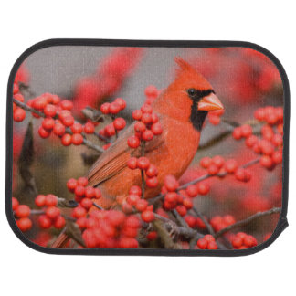 Northern Cardinal male on Common Winterberry Car Mat