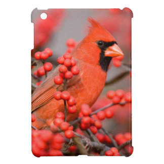 Northern Cardinal male on Common Winterberry Cover For The iPad Mini