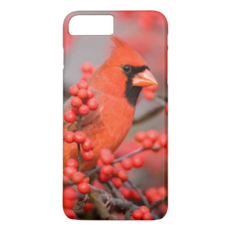 Northern Cardinal male on Common Winterberry iPhone 8 Plus/7 Plus Case