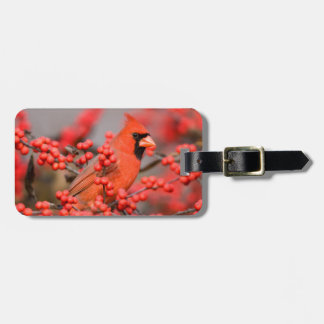 Northern Cardinal male on Common Winterberry Luggage Tag
