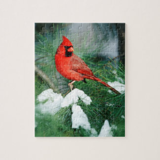 Northern Cardinal male on tree, IL Puzzle