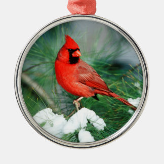 Northern Cardinal male on tree, IL Silver-Colored Round Decoration