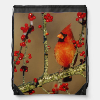 Northern Cardinal male perched, IL Drawstring Bag