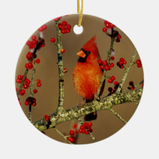 Northern Cardinal male perched, IL Round Ceramic Decoration