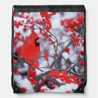Northern Cardinal male, Winter, IL Drawstring Bag
