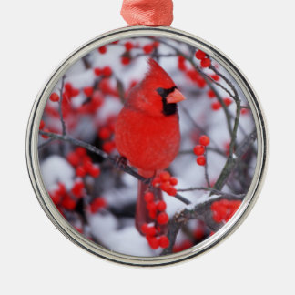 Northern Cardinal male, Winter, IL Silver-Colored Round Decoration