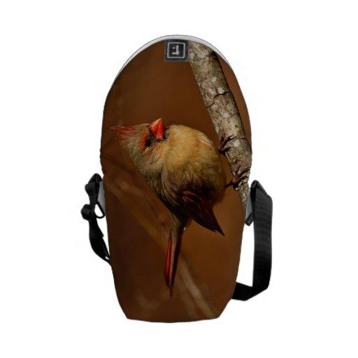 Northern Cardinal Courier Bag