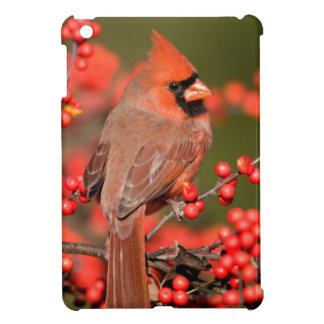 Northern Cardinal on Common Winterberry Case For The iPad Mini
